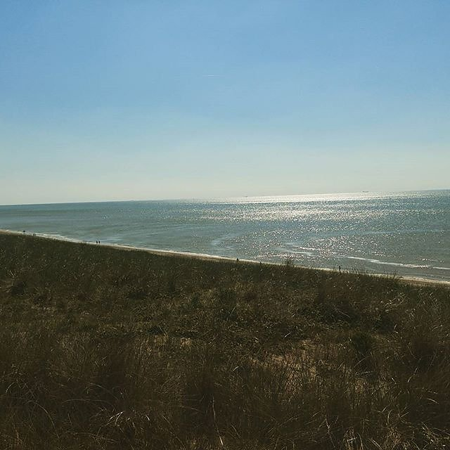 Already missing the sea. Need to return soon. #travel #netherlands #hollland #beach #seaside